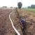 Osuszanie pola